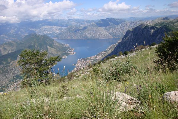 Bay of Kotor, view from our walk, Montenegro