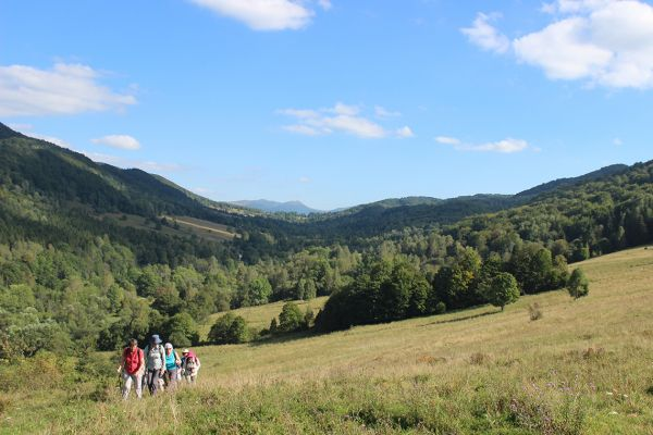 Walking in the Bieszczady National Park