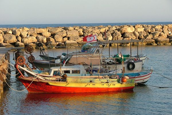 Fishing boats, North Cyprus