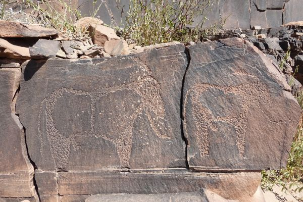 Prehistoric rock carvings near Tafraout