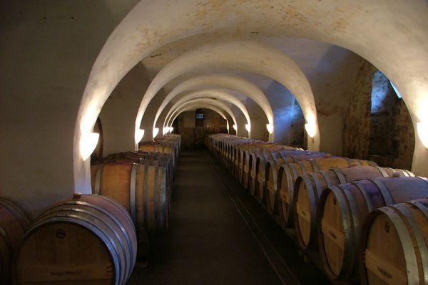 Austria - wine cellar