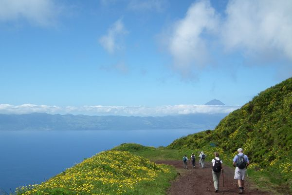Walking on Pico island, Azores