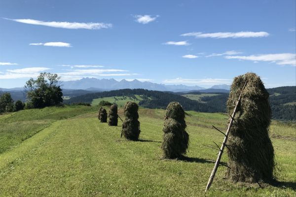 Looking at the Tatra Mountains from Sromowce Wyzne