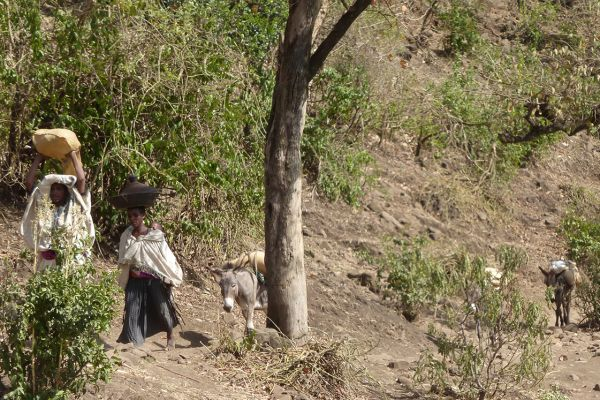 Life in rural Ethiopia has continued virtually unchanged for millennia