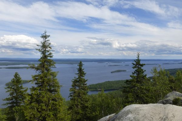 View from Ukko-Koli over Lake Pielinen