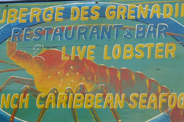Bequia - fresh lobster