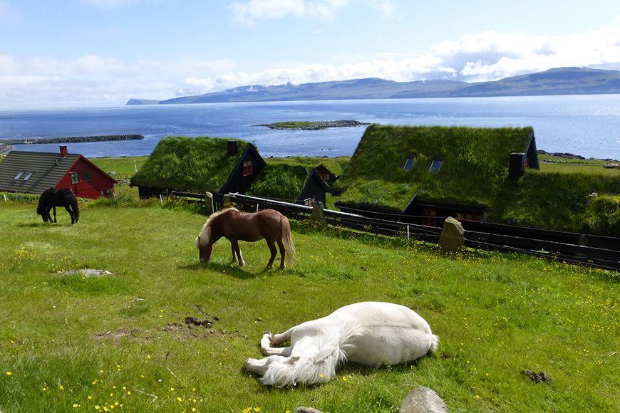 Faroes Kirkjubor