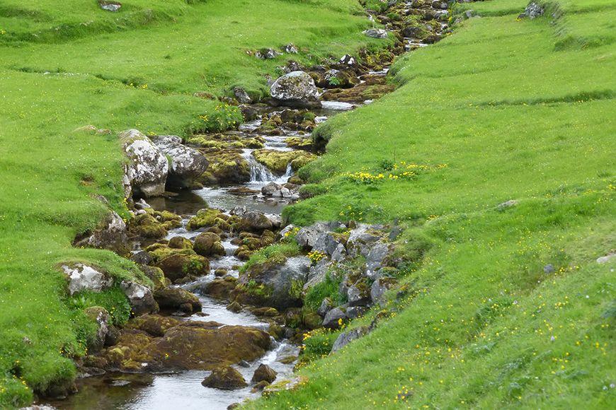 Faroes stream