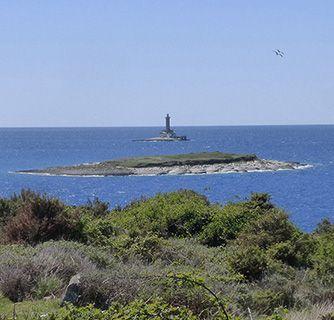 Istria Cape Kamenjak