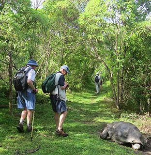 Ecuador walk