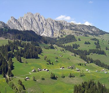 Gstaad Alps