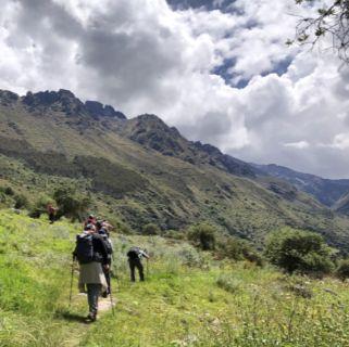 Peru walk