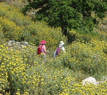 Corfu walkers