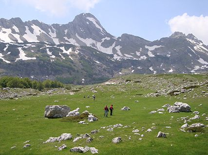 Montenegro pass