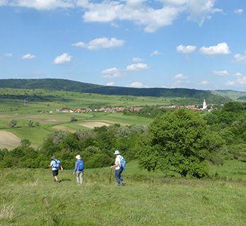 Romania Bunesti walk